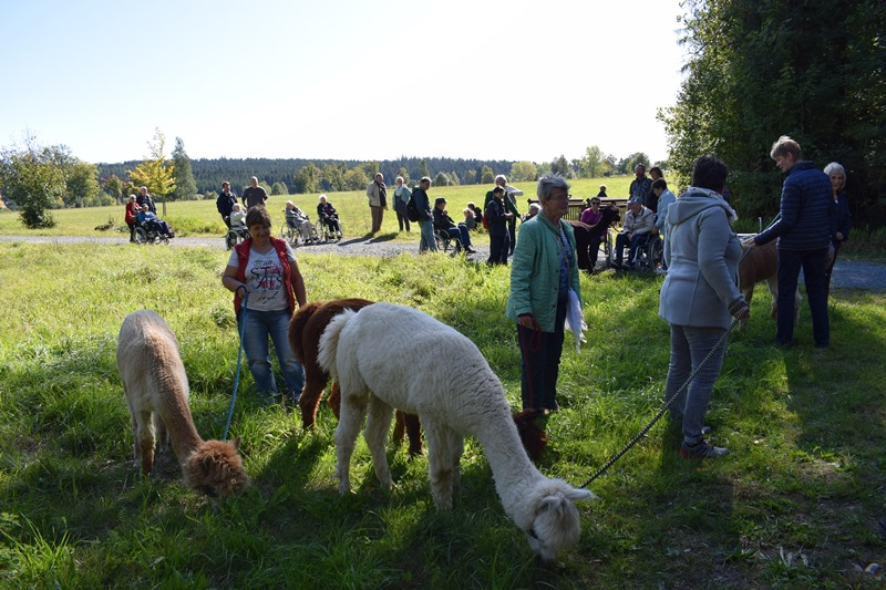Aktivtag-September-2019-in-Muldenberg_0153.jpg